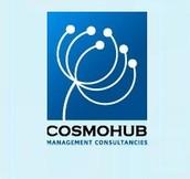 Cosmohub Management Consultancy Services