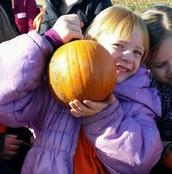 Celebrating the Season at Freddy Hill Farm