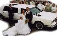 Het trouwfeest