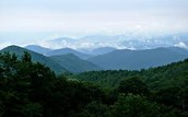 Located in the Mountain region of North Carolina!