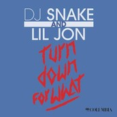 """Turn Down for What"" - DJ Snake and Lil Jon"