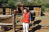 Curso Healing Touch para animales, Sanación y aromaterapia
