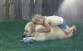 Cada día mi famila y yo veíamos el perro.