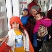 Mount Roberts Tram Field Trip