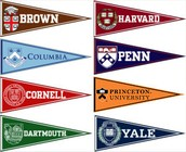 These schools are know as the Ivy League Schools.