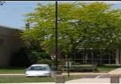 Twin oaks middle school-Carson Hilborn