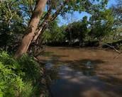The Leon River