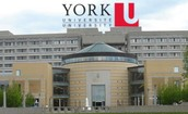 York University- Marketing