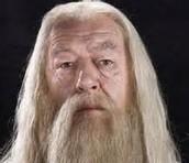 Professor Albus Dumbldore