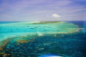 Horseshoe Reef, Anegada, British Virgin Islands