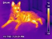 About Infrared