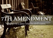 What is the 7th amendment ?