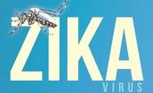 Zika Virus -  Guidance for Schools