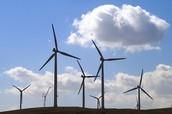 Flock of Wind Turbines