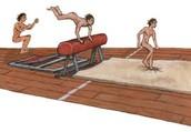 Gymos or Gyms