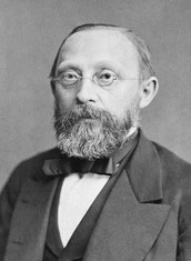 Rudolf Virchow October 13 1821 to September 5 1905