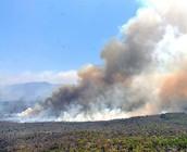 El temor a los incendios forestales que se intensifica el calor