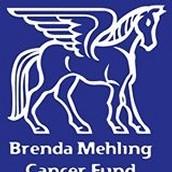 Brenda Mehling Cancer Fund