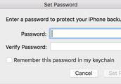 important password's