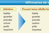 Tú Affirmative y Tú negative