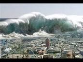 The Japanese Tsunami