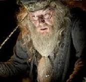 Albus!