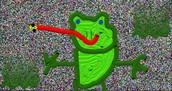 zail'sfrog pond