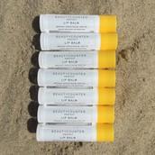 Protect Lip Balm