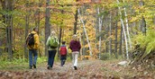Guided Hike, Sundays at 1:00