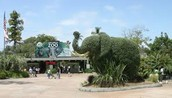 Spend A Day In The Zoo