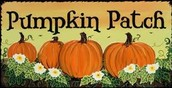 Visit a local Pumpkin Patch