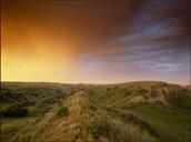 Grassland Picture!