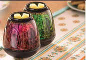 scentsy with courtney (independent consultant)