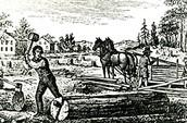 Indentured servant chopping wood