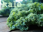 What is Kale??
