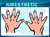 Learning Style: Kinesthetic Learner