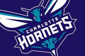Charlotte Hornetts Grant!!