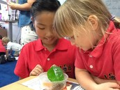 Looking at Habitats