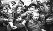 Children Survivors
