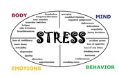 Physical/Mental causes of stress