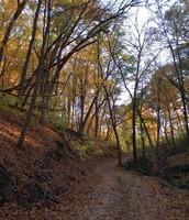Fall in Pipestone