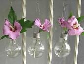 שימוש במנורות שנשרפו לגידול פרחים