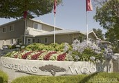 Whispering Woods Apartments....  (209) 527-9829