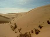 Visiting Gobi Deserts