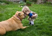 Your Child & Pet's Health for a Happy Family