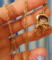 Chooce a Necklace or Earrings