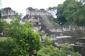 Mayans left
