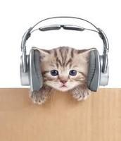 A mi me gusta musica.