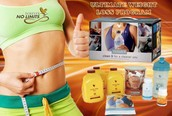 The weight loss programme