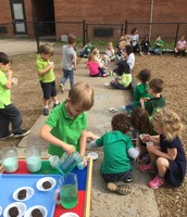 Sharing our green treats
